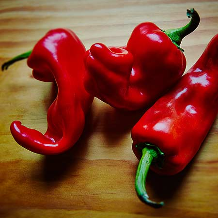red pepper photo by bret wills
